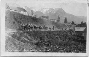 Pack train returning Hazelton